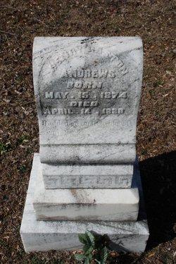 Henry Gaston Andrews