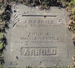 Emily A Arnold