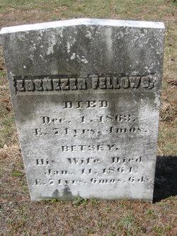 Ebenezer Fellows