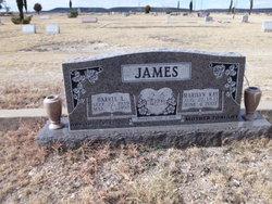 Harrel L. James