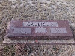 Nancy Belle <I>Egger</I> Callison