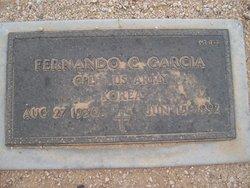 Fernando C Garcia