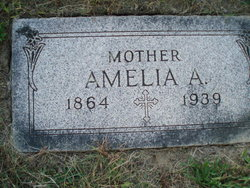 Amelia A. Volk