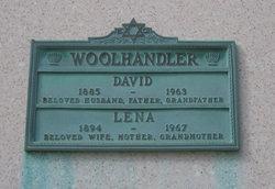 David Woolhandler
