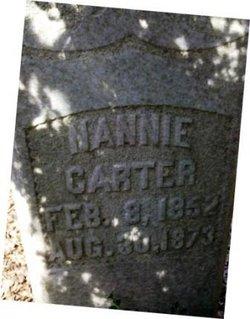 """Nancy Tate """"Nannie"""" Carter"""