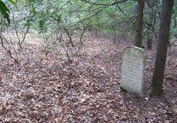McDowell Grave
