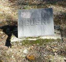 Baby Boy Bush