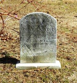 Mary Storey Parry Whitney