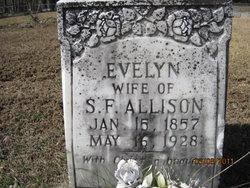 Avaline Evelyn <I>Anders</I> Allison