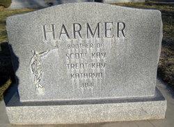 Paul Kay Harmer