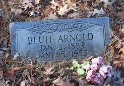 William Bluit Arnold
