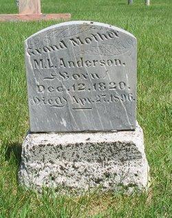 M. L. Anderson
