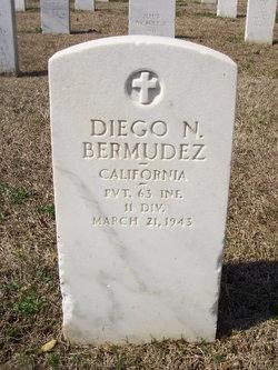 Diego N Bermudez