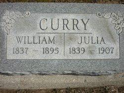 Julia Ann <I>Raper</I> Curry