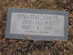 Rosa <I>Teal</I> Canipe