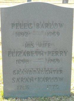 Peleg Barlow
