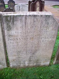 Johannis Brillinger