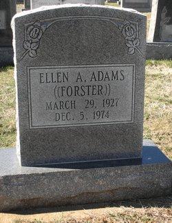 Ellen A. <I>Forster</I> Adams