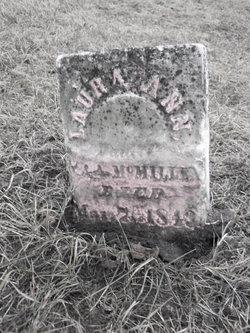 Laura Ann McMillen