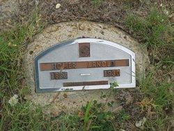 Homer Arnold