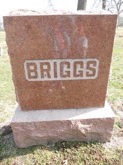 Kate <I>DeHaven</I> Briggs