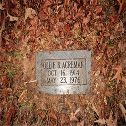 Ollie Bee Acreman