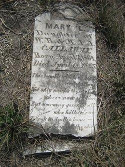 Mary L. Callaway
