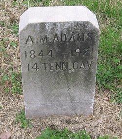 Albert Matthew Adams