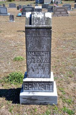 Asa McNeill Bennett