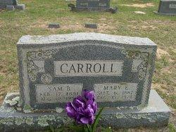 Mary Elizabeth <I>Steen</I> Carroll