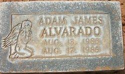 Adam James Alvarado