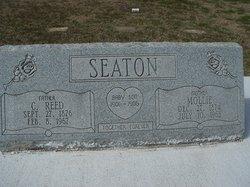 Baby Boy Seaton