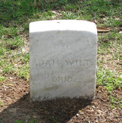 Adam Wilt