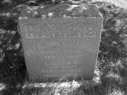 Pleasant H. Hawkins