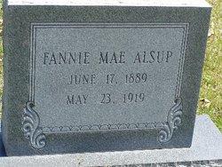 Fannie Mae <I>Abbott</I> Alsup