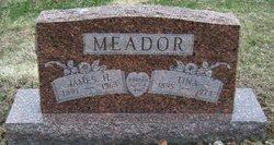 Tina <I>Gregory</I> Meador