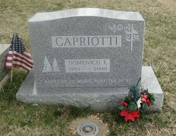 Domenico E. Capriotti