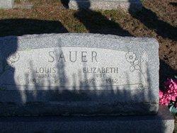 Peter Louis Sauer