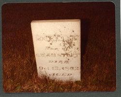 John Thomas Stout