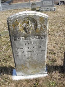 David F. Gamby