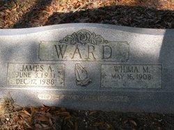 James A Ward