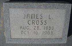 James L Cross