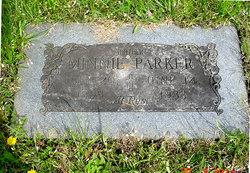 Minnie E. <I>Parker</I> Palmer
