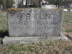 Harvey T. Spradling