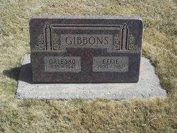 Orlesko Gibbons
