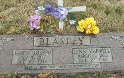 Lena <I>Harwell</I> Blakley