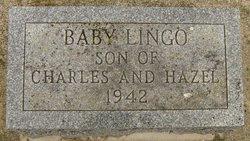 Baby Lingo