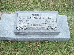 Wilhelmine J. Ludwig