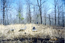 Sally Burns Cemetery