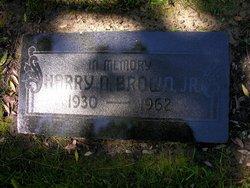 Harry Nehemiah Brown, Jr